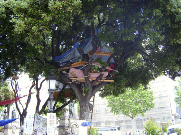 Spanish politics in technicolour - desahuciados tree house Barcelona